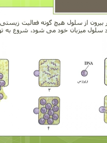 پاورپوینت میکروب ها، بیماری و سلامتی
