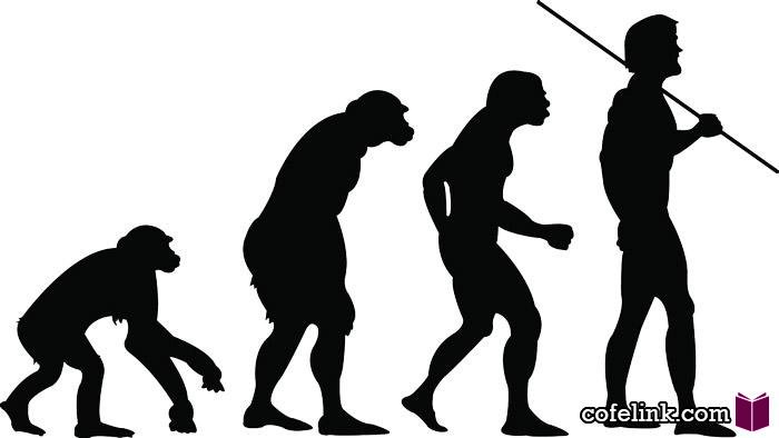 رشد و تکامل