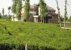 کارتحقیقی منع تغییر کاربری و تفکیک اراضی کشاورزی و باغی