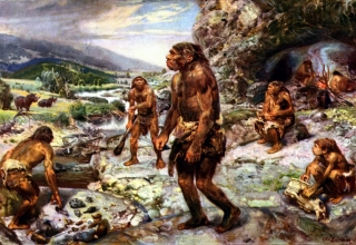 چرا انسان های اولیه در غار زندگی میکردند؟